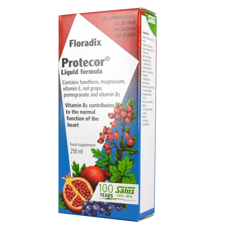 POWER HEALTH Floradix Protecor Liquid Formula 250ml