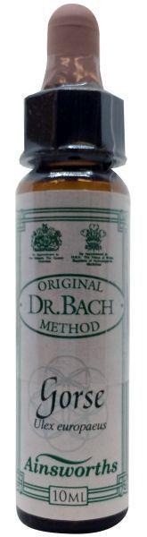 DR.BACH Ainsworths Gorse 10ml