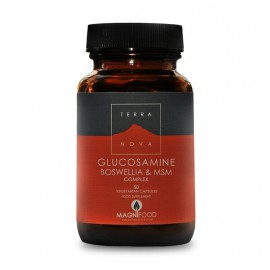 TERRANOVA Glucosamine, Boswellia & ΜSM Complex - Joint Support 50caps