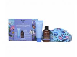 Apivita Set Aqua Beelicious Comfort Απαλή Κρέμα Ενυδάτωσης Πλούσιας Υφής 40ml  + Δώρο Cleansing Foam Αφρός Καθαρισμού για Πρόσωπο & Μάτια 50ml + Κορδέλα Μαλλιών 1τμχ