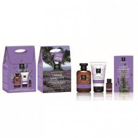 Apivita Caring Lavender ΠΑΚΕΤΟ ΠΡΟΣΦΟΡΑΣ με Απαλό Αφρόλουτρο για Ευαίσθητες Επιδερμίδες, 300ml, Ενυδατική & Καταπραϋντική Κρέμα Σώματος, 150ml & Καταπραϋντικό Λάδι Σώματος, 20ml
