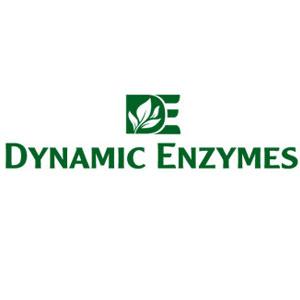 DYNAMIC ENZYMES